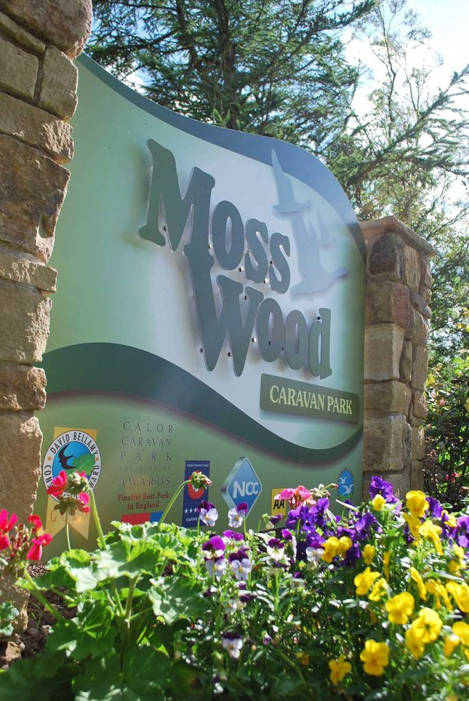 Moss Wood Entry