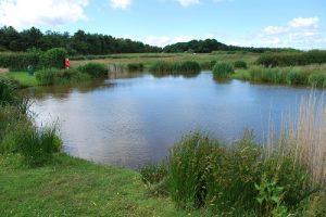 Coarse Fishing Lake