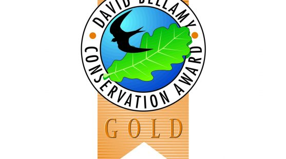 Moss Wood Caravan Park is a winner of the David Bellamy Conservation Award 2016