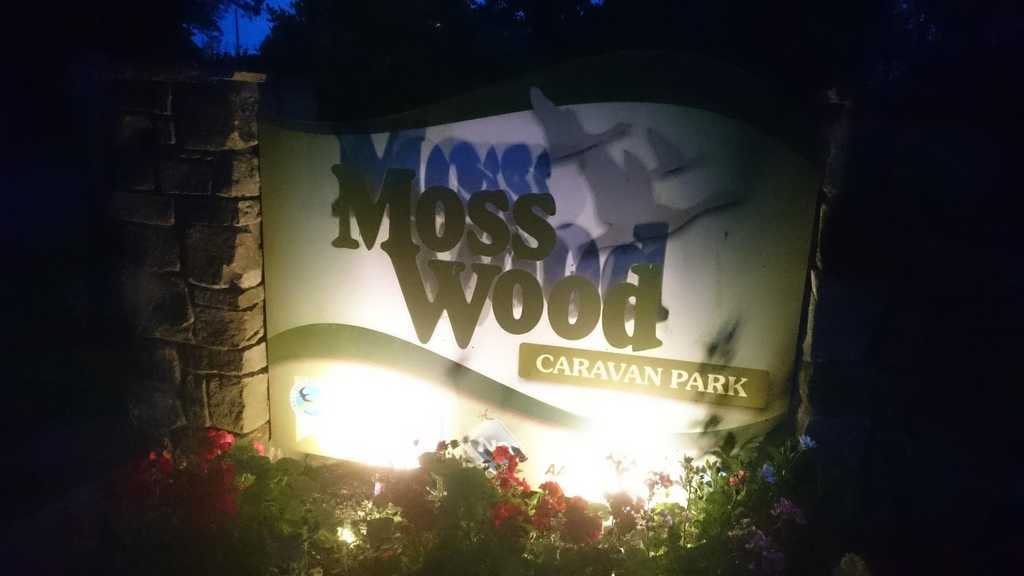 Moss Wood Caravan Park at night Bat Walk