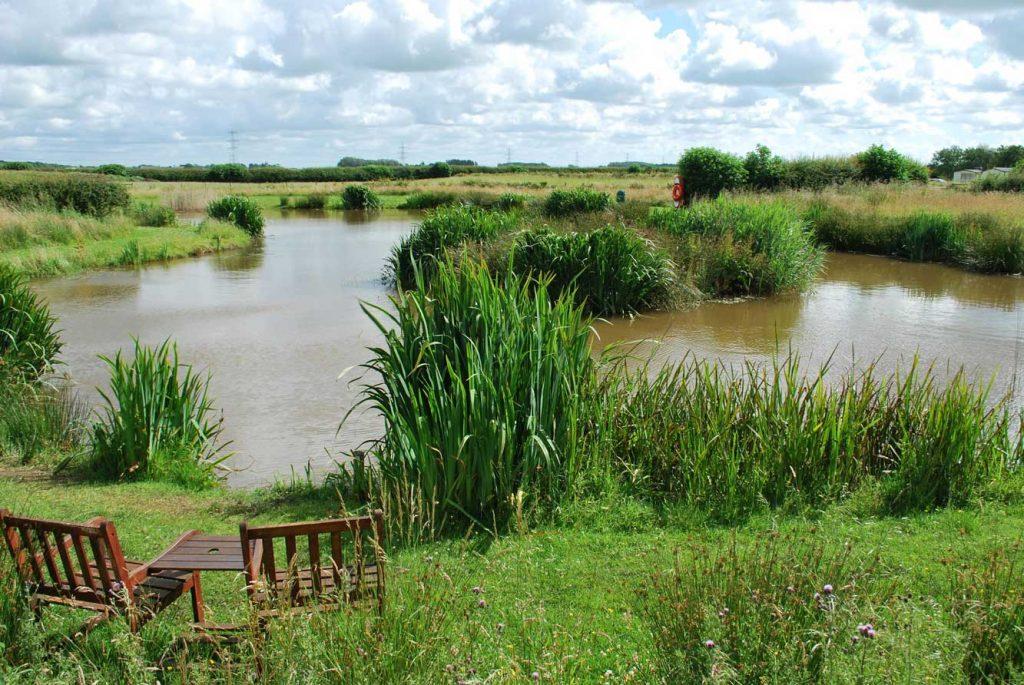 Fishing Lake at Moss Wood Caravan Park