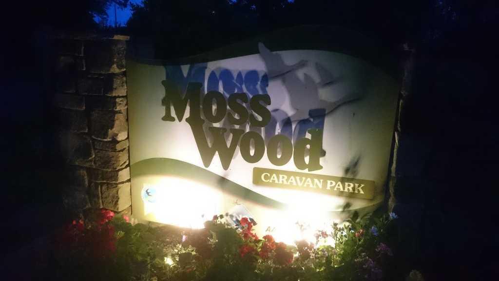 Moss Wood Caravan Park at night Bat Walk