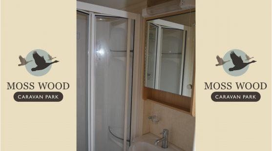 Bathroom of Swift Bordeaux 2011 Caravan at Moss Wood Caravan Park