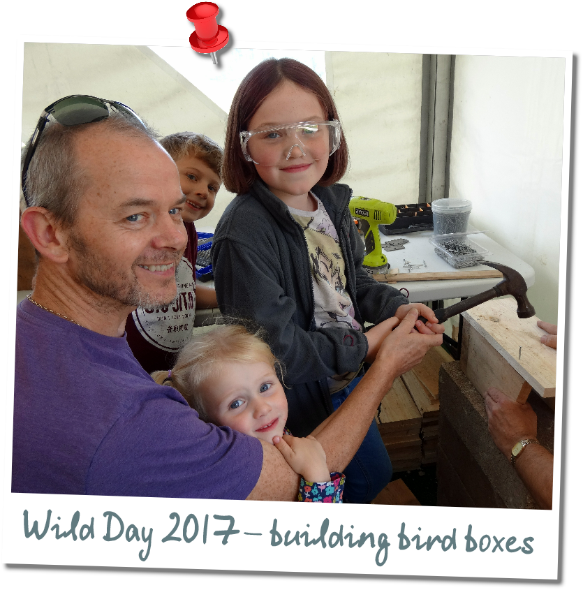 Wild Open Day Events Pin