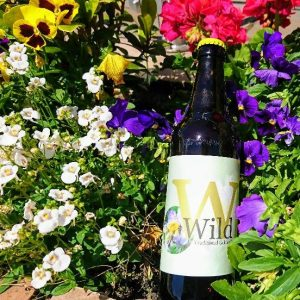 Wild Traditional Golden Ale
