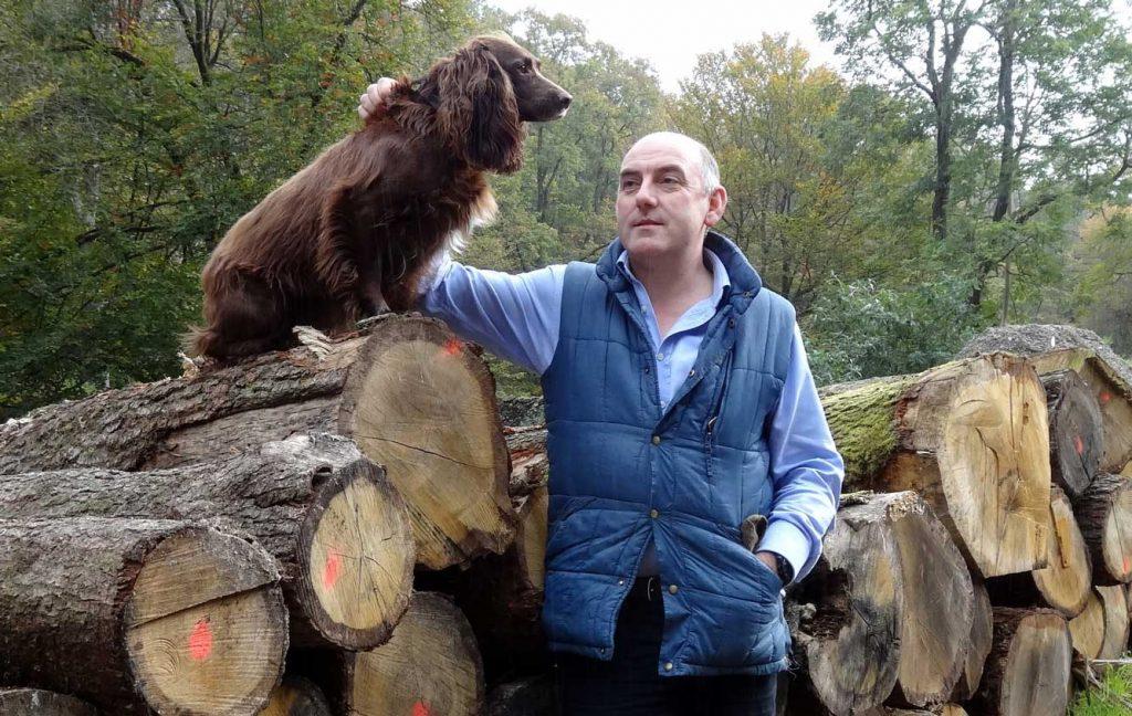 Dog Friendly Henry